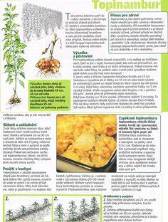 - Dieta Detox, Montessori, Cantaloupe, Beautiful Flowers, Entertainment, Gardening, Fruit, Vegetables, Health