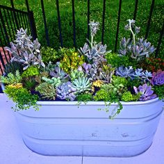 #succulent #plants #garden  I love painting tub bins in soothing colors for my plants on the deck.