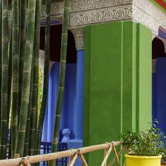 Colors and nature in #Majorelle Garden in #Marrakech #garden #jardinmajorelle #jardin #blue #green #majorellegarden #Maroc #Morocco #travel #travelphotography #voyage #magazine #ipad #nowmaroc