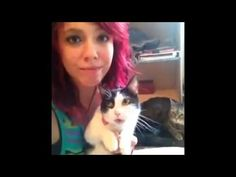 """Funny Cats Funny Cat Videos Best Funny Videos 2016 - http://positivelifemagazine.com/funny-cats-funny-cat-videos-best-funny-videos-2016/ http://img.youtube.com/vi/G30oGO3d4XQ/0.jpg  Funny Cats Funny Cat Videos Best Funny Videos 2015 Funny Videos Compilation/Welcome to Funny Videos Compilation Channel! With the most interesting, … Learn more Please follow and like us:  var addthis_config =   url: """""""",  title: """""""""""