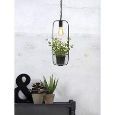 It's about Romi Florence hanglamp met plantenhouder | FLINDERS Urban Lighting, Lamp, Linen Shades, Glass Containers, Hanging Lamp, Plant Holders, Inspiration, Glass, Clear Glass