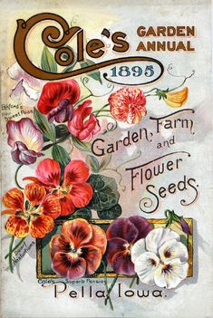 Cole's 10 1895  Seed Store Pella Iowa Seed Company Bright