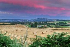 Hay Bales in Blackwater, Isle of Wight, England