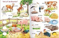 Животные на крестьянском дворе