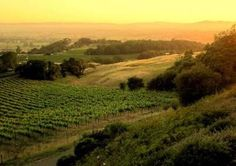 I could go back home and FINALLY be with my family?  Sonoma County, CA..