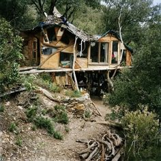 Tree house - extremely livable, and it is totally off the grid.