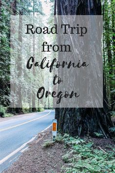 Road Trip from California to Oregon