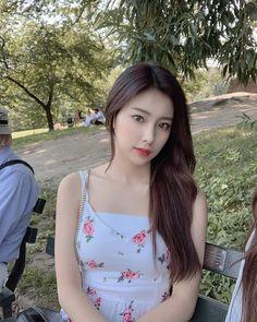 Image may contain: one or more people, tree and outdoor Kpop Girl Groups, Kpop Girls, Korean Girl, Asian Girl, Sakura Miyawaki, Yu Jin, Japanese Girl Group, Kim Min, Humor
