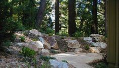 Blue Spruce Landscape & Construction, Inc.
