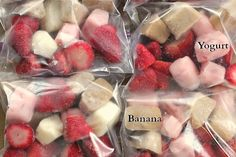 DIY Fruit and Yogurt Smoothies Bags | One Hundred Dollars a Month