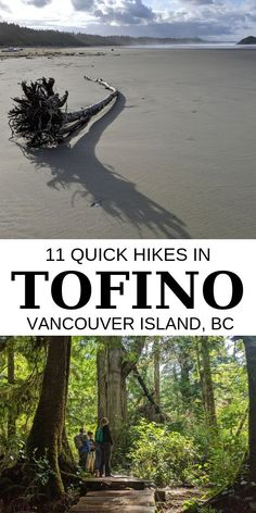 Short on time but want to experience the magic of Vancouver Island& West Coast? Here are 11 fast and fun Tofino hikes which showcase this beautiful area Ways To Travel, Places To Travel, Places To See, Vancouver Island, Alberta Canada, Ontario, West Coast Trail, West Coast Canada, Road Trip