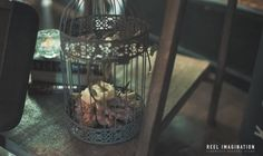 Rustic bird cage with flowers