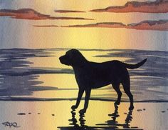 LABRADOR RETRIEVER SUNSET  Dog Watercolor Signed Fine Art Print by Artist D J Rogers on Etsy, $12.50