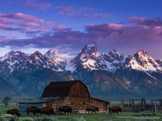 Breathtaking image of Grand Teton National #Park captured at dawn via National Geographic #Wyoming #US #travel #ttot http://ift.tt/1tbe99i