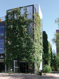 At 5c Studios in Tempe, Arizona, green façade systems or green walls provide a building-site interface to improve urban air quality and building energy efficiency.