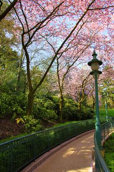 Parc des Buttes-Chaumont - Réverbère