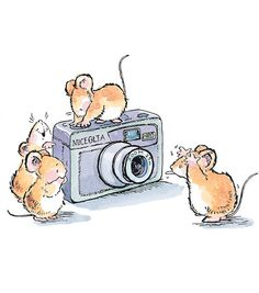 Mouse taking picture with the camera |