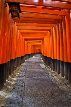 A Thousand Gates (Fushimi Inari), Japan