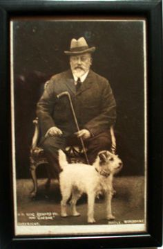 KING EDWARD VII FRAMED POSTCARD with his WIRE FOX TERRIER DOG CAESAR