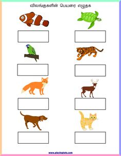 Free printable for kids (toddlers/preschoolers) flash cards/charts/worksheets/(file folder/busy bag/quiet time activities)(English/Tamil) to play and learn at home and classroom. Teach English To Kids, English Activities For Kids, English Worksheets For Kindergarten, Worksheets For Grade 3, Spelling Worksheets, Letter Worksheets, Reading Worksheets, Kindergarten Worksheets, Printable Worksheets