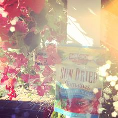 Our sun dried tomatoes enjoying some sun!