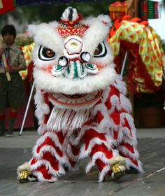 Chinese new year, lunar new year, dragon dance