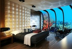 1000 Images About Under The Sea Hotels On Pinterest