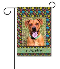 """Paw Print Portrait I Photo Garden Flag: Flag Size: 12.5"""" x 18"""" Flag stand sold separately Proudly Printed in the USA Vibrant colors printed on a poly/cotton outdoor quality fabric. Digitally print"""