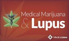 Dr. Sean Breen. Medical Marijuana and Lupus: What You Need to Know