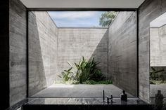 The robust concrete walls contrast with the abundant use of glass, which allows daylight to flood into the spaces and ensures constant visual contact with the lush vegetation. Luz Natural, Portugal, Interior Garden, Interior And Exterior, Interior Design, Amazing Architecture, Interior Architecture, Concrete Facade, Board Formed Concrete
