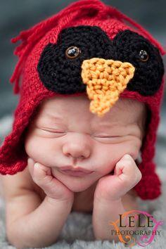 Cardinal Baby Bird Cap