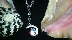 Dolphin Conch Necklaces