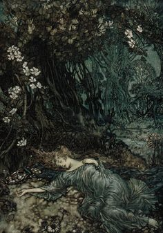 """A Midsummer Night's Dream"" by William Shakespeare (1908) by Arthur Rackham"
