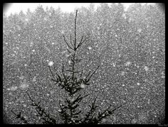 Romance with the snow...
