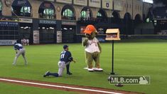 The Blue Jays were playing in Houston this weekend, so of course, Orbit went bird-watching