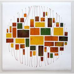Maple Circle Print by: Owen Mortensen
