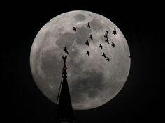 Lua Cheia já aparece em noite que deve ocorrer a 'superlua'