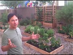 John from http://www.growingyourgreens.com/ goes on a field trip to a viewers house who is growing a full-on backyard garden in the home he does not own.      In this episode you will see what is being grown in this North Las Vegas desert garden and some of the techniques that are being used to grow food today.  Why put off until tomorrow what y...