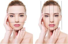 facial-proportions-vertical-and-horizontal-cropped.jpg (1009×655)