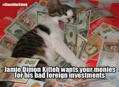 First of hopefully many Jamie Dimon Kittehs