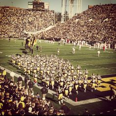 I do understand it. I do follow the plays. I do yell at the refs.  I do face palm when they screw up. I do spend my Saturdays cheering them on.  Because I am a hawkeye. And hawkeyes take it seriously.