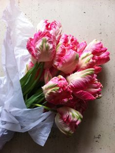 Tulips. So pretty!
