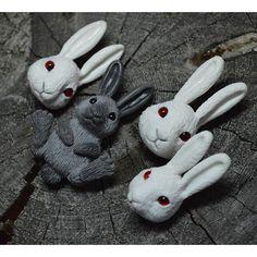 серый заяц <3