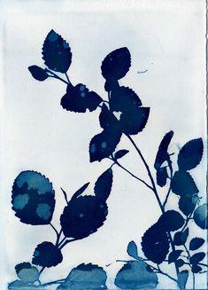 Items similar to Botanical Wall Art Blue Cyanotype Floral Art Print on Etsy Art Floral, Cyanotype Process, Sun Prints, Alternative Photography, Watercolor Sky, Winter Wallpaper, Botanical Wall Art, Unique Wall Art, Art Techniques