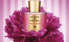 Peonia Nobile by Acqua di Parma is a Floral fragrance for women. This is a new fragrance. Peonia Nobile was launched in The fragrance features bla. Beauty Tips For Hair, Beauty Hacks, Freebies Uk, Free Competitions, Get Free Stuff, New Fragrances, Free Makeup, Smell Good, Parma
