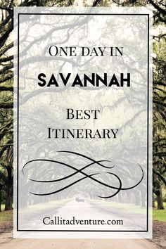 Savannah GA Things To Do. One Day Guide · Call It Adventure Savannah GA things to do Savannah Georgia, Visit Savannah, Savannah Chat, Tybee Island Georgia, Savannah Attractions, Stuff To Do, Things To Do, Ga In, Hilton Head Island