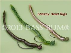 The Shaky Head, Plastic Fishing Worms Rigged On A Jig Head