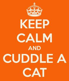 KEEP CALM AND CUDDLE A CAT -