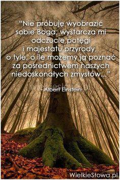 Nie próbuję wyobrazić sobie Boga... #Einstein-Albert,  #Ból,-cierpienie,-łzy, #Przyroda-i-zwierzęta, #Wyobraźnia