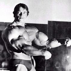 Image detail for -Arnold Schwarzenegger Traiu sua esposa com a empregada.